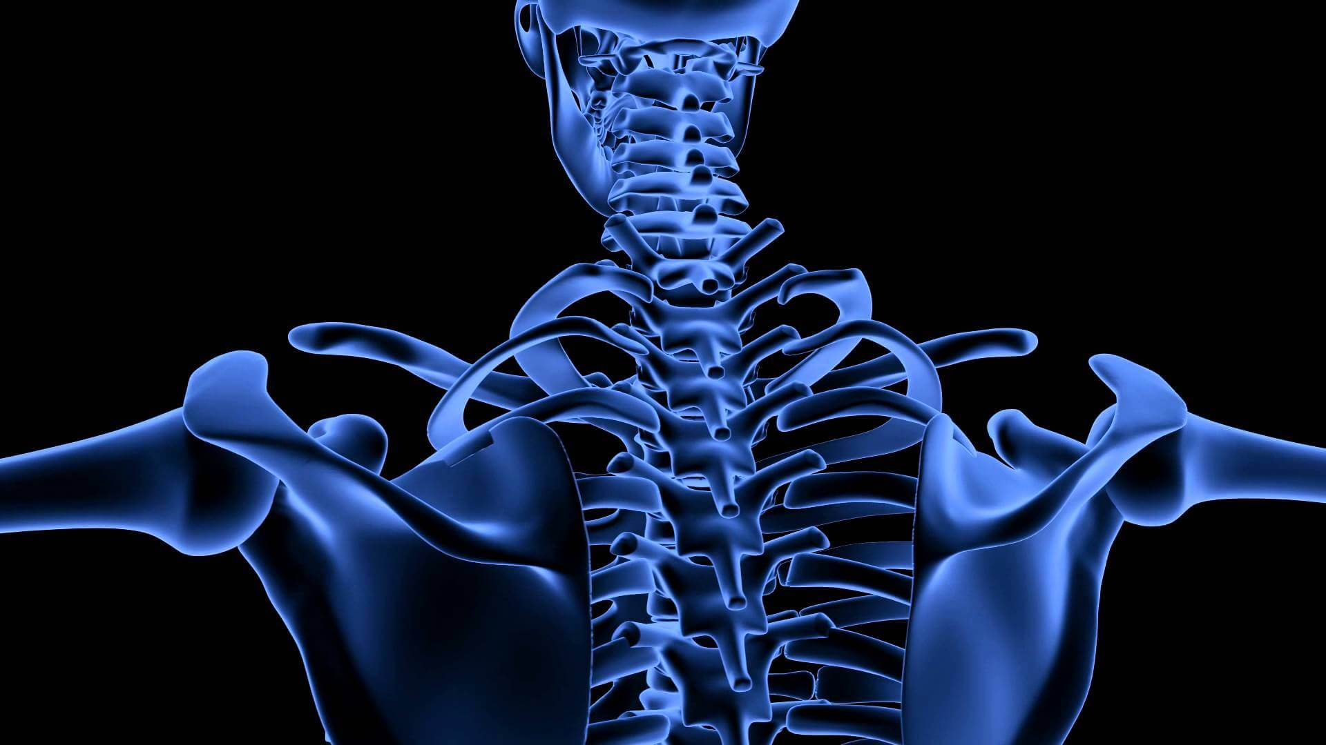 Why Bone Health Could Be Compromised In People With Kidney Disease