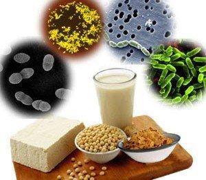 Are Prebiotics and Probiotics A Good Idea For Kidney Health?