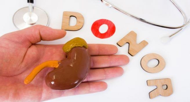 Donating A Kidney Could Increase Your Health Risks & What To Do About It!