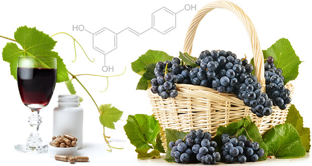 Resveratrol May Provide Protection Against Potential Kidney Damage