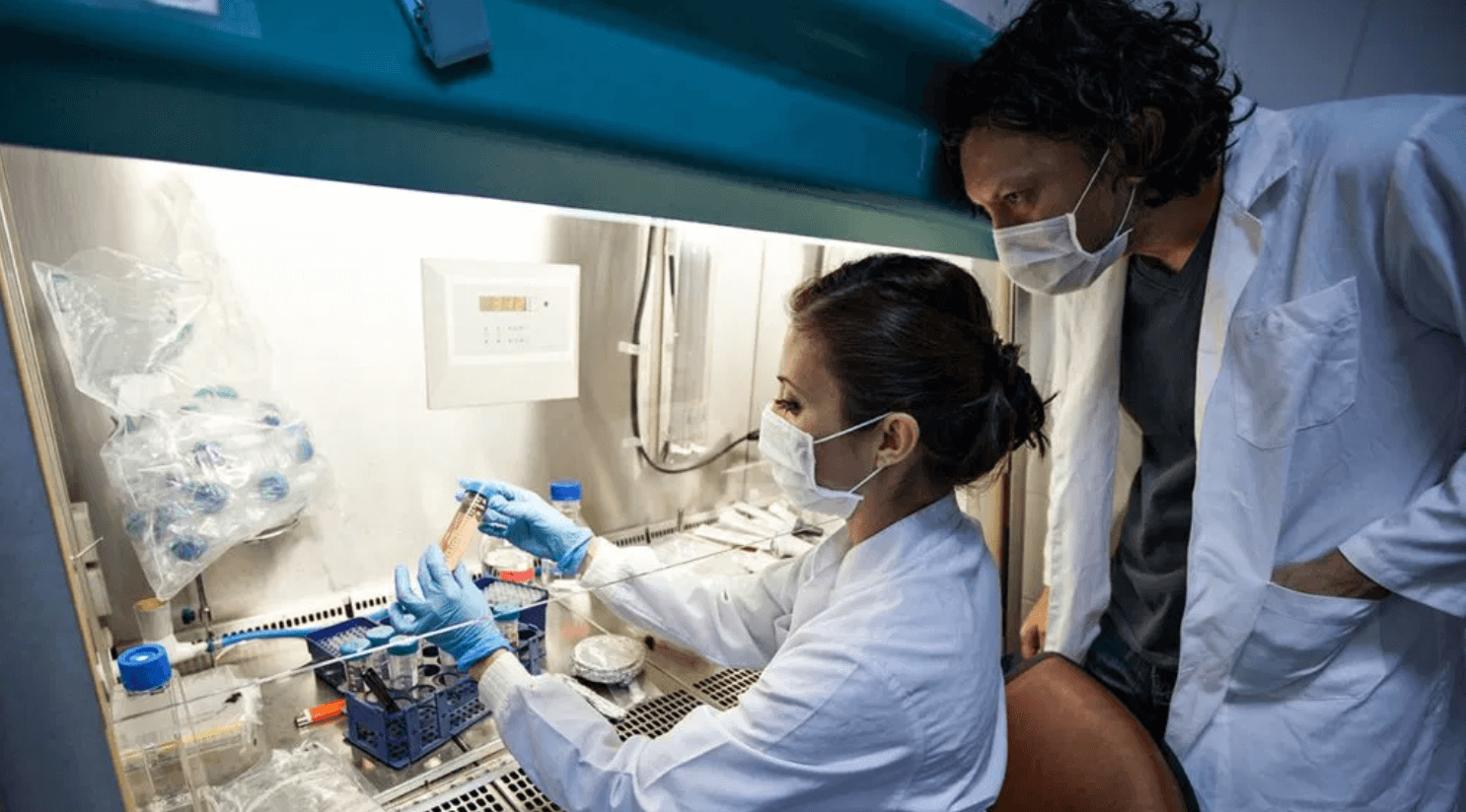 Can Alpha Lipoic Acid Help Kidney Disease?