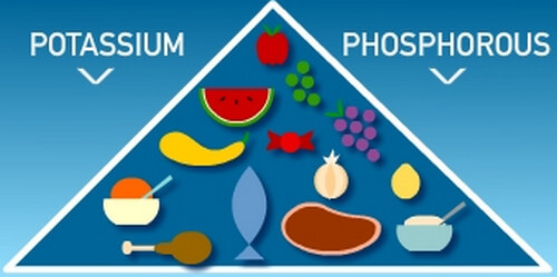 CKD Prevention By Pyramid Portioning Your Food Could Be Key, New Study Suggests